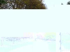 wrought-iron-driveway-gate-36
