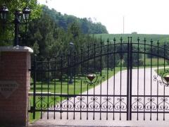 wrought-iron-driveway-gate-9