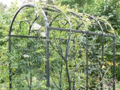 wrought-iron-trellis-arbor-2