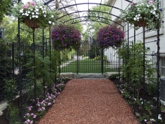 wrought-iron-trellis-arbor-6